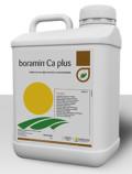 Boramin Ca plus