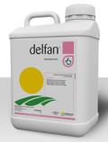 Delfan