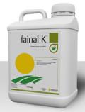 Fainal K