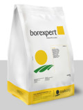 Borexpert